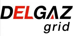 E.ON Distribuţie România începe anul 2017 cu un nou nume, Delgaz Grid