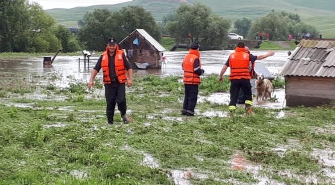 Misiuni ale pompierilor în urma ploilor abundente. Stână înconjurată de ape în Vornicenii Mari