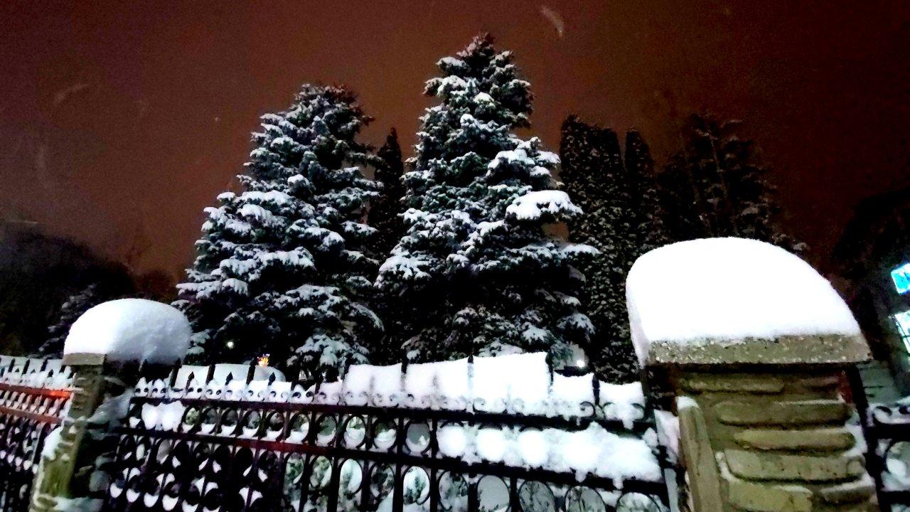 iarna_4